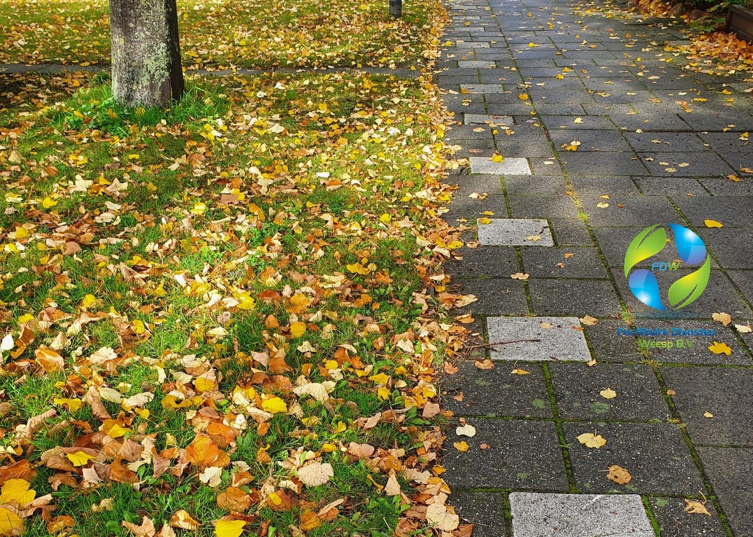 staartje met herfstbladeren